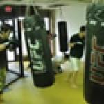 Circuit Training Exercises