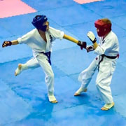 KYOKUSHIN-fighting